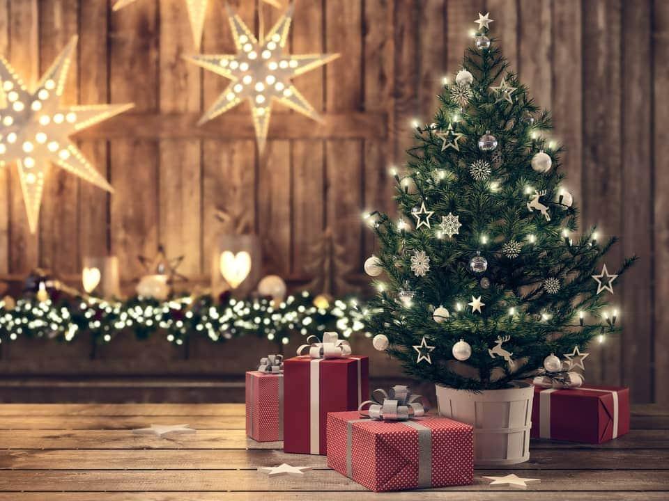 mit wespe unterm weihnachtsbaum atack control. Black Bedroom Furniture Sets. Home Design Ideas